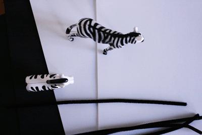 Disfraz casero de cebra - Didongo
